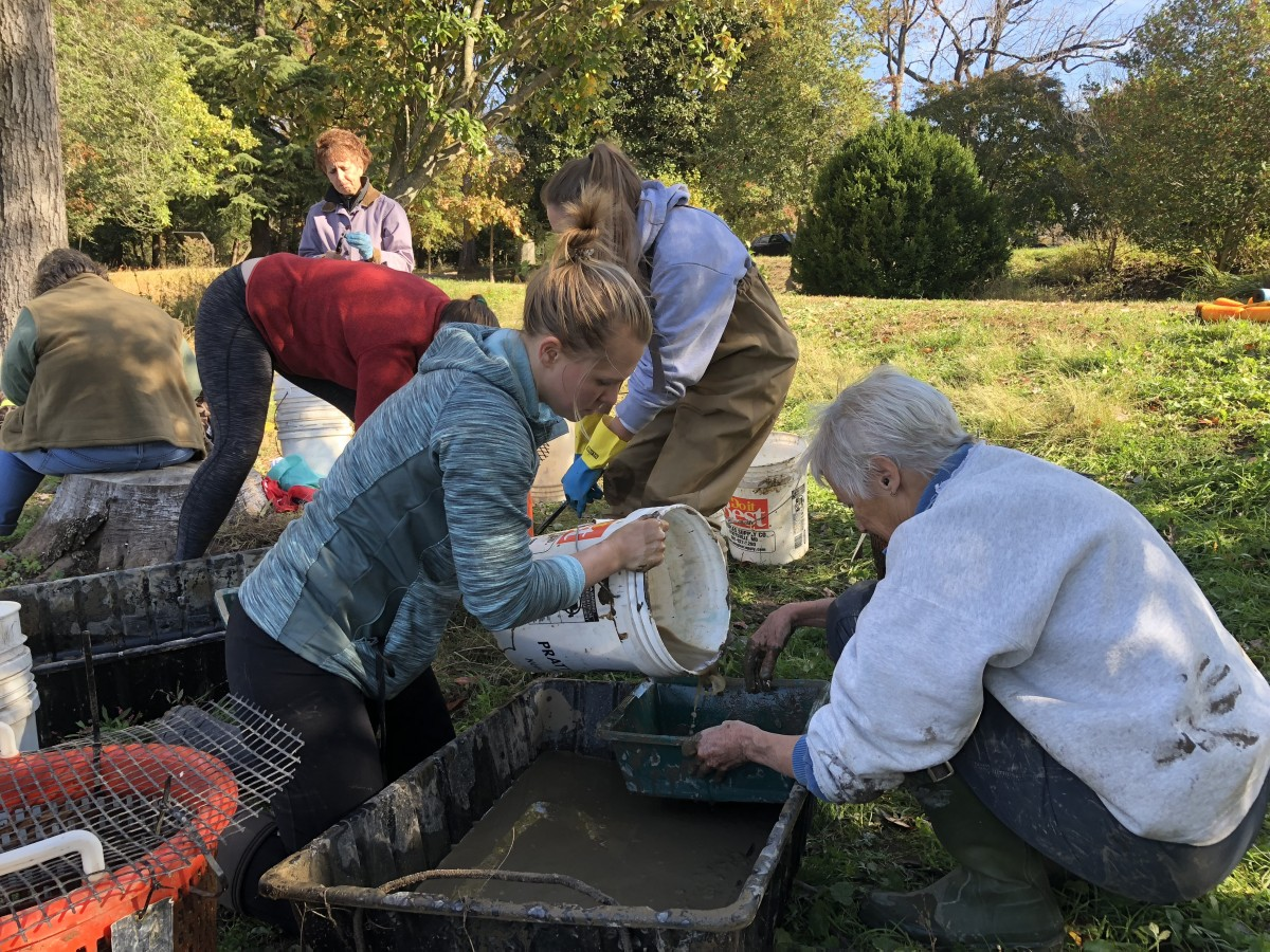 Freshwater Mussel Restoration Workday