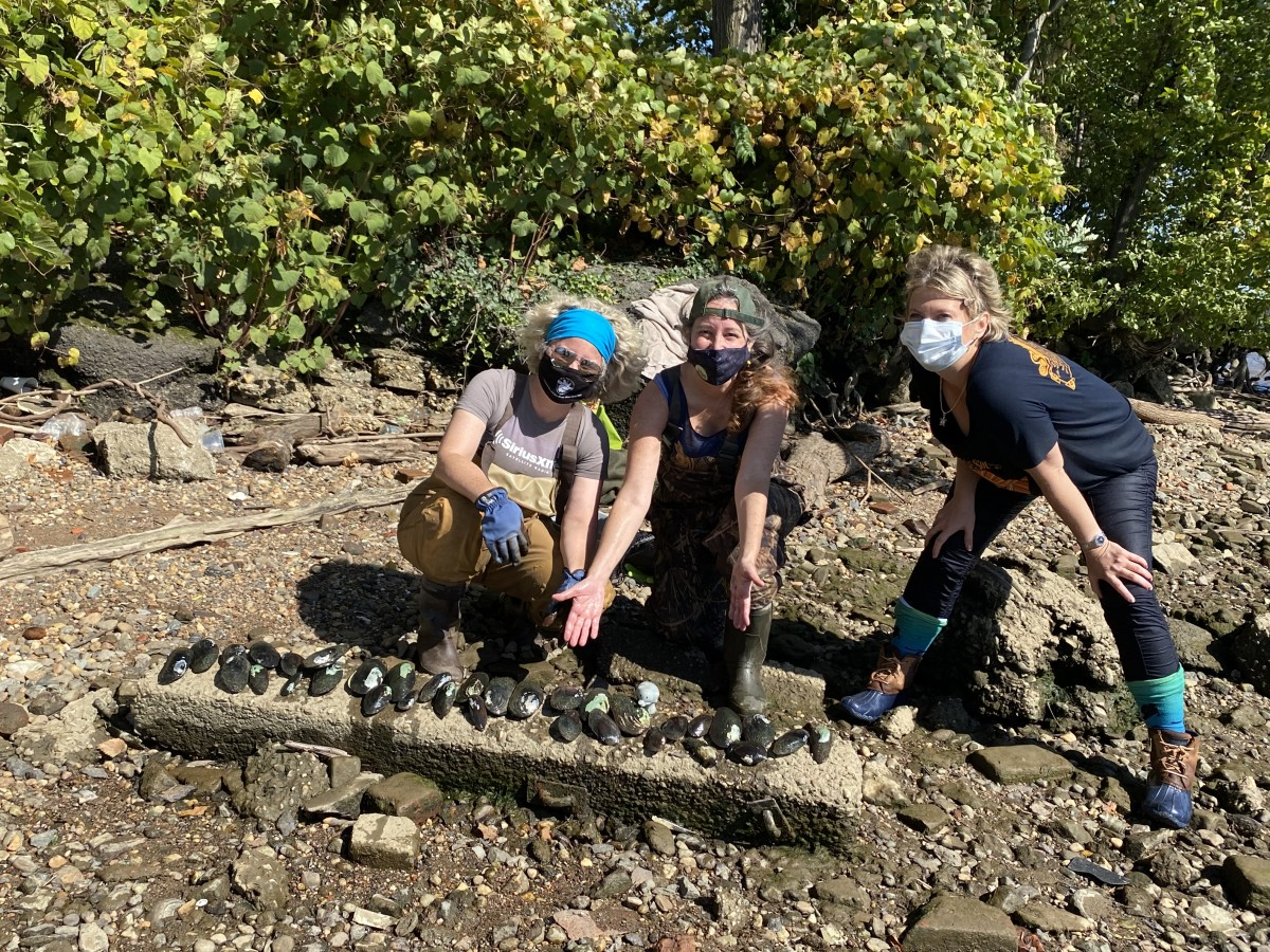 Freshwater Mussel Survey at Buzzard Point