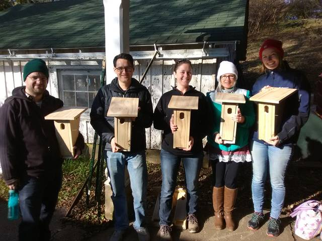 11.17.18 bluebird house construction