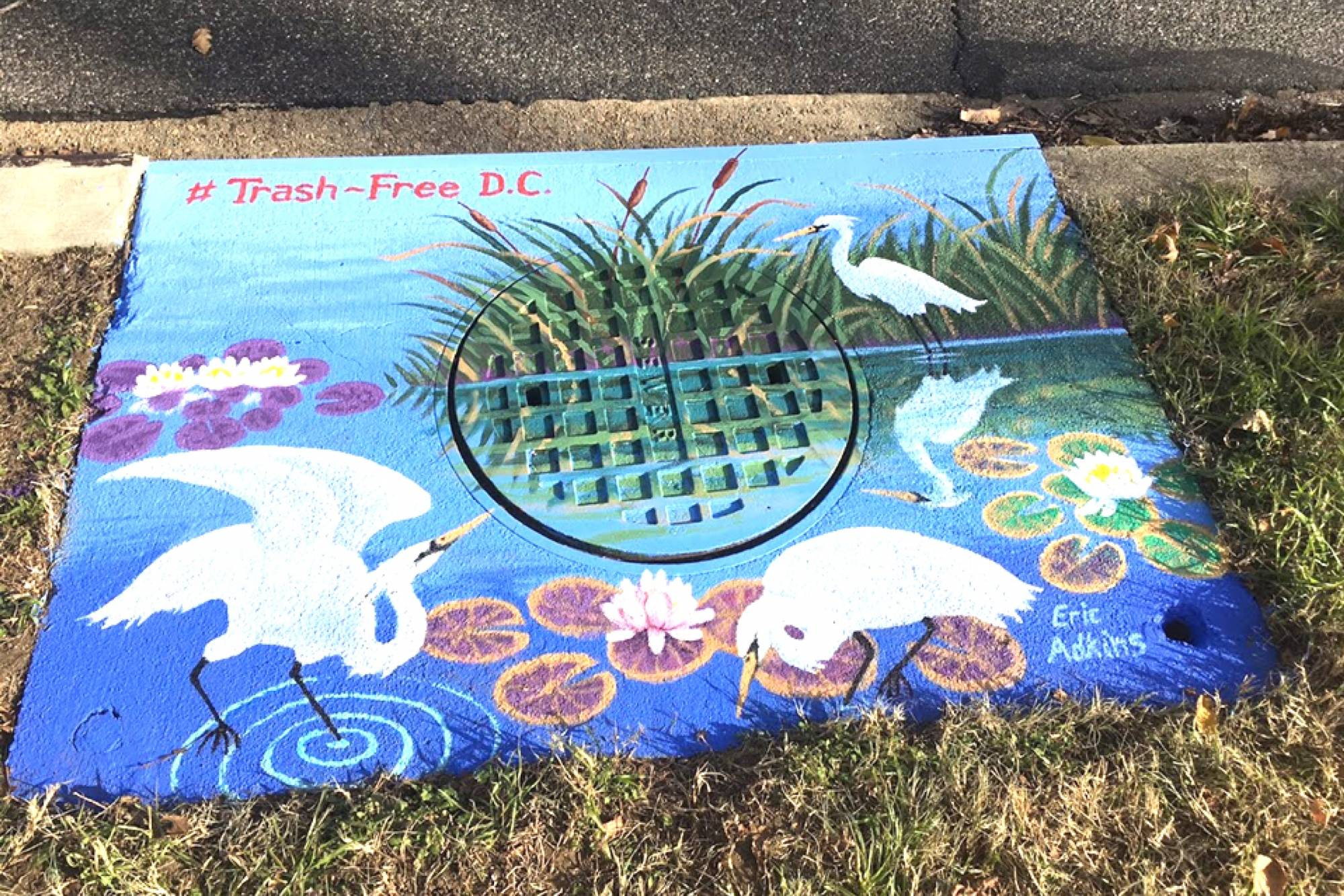 Call For Artists: Storm Drain Murals in Lamond-Riggs