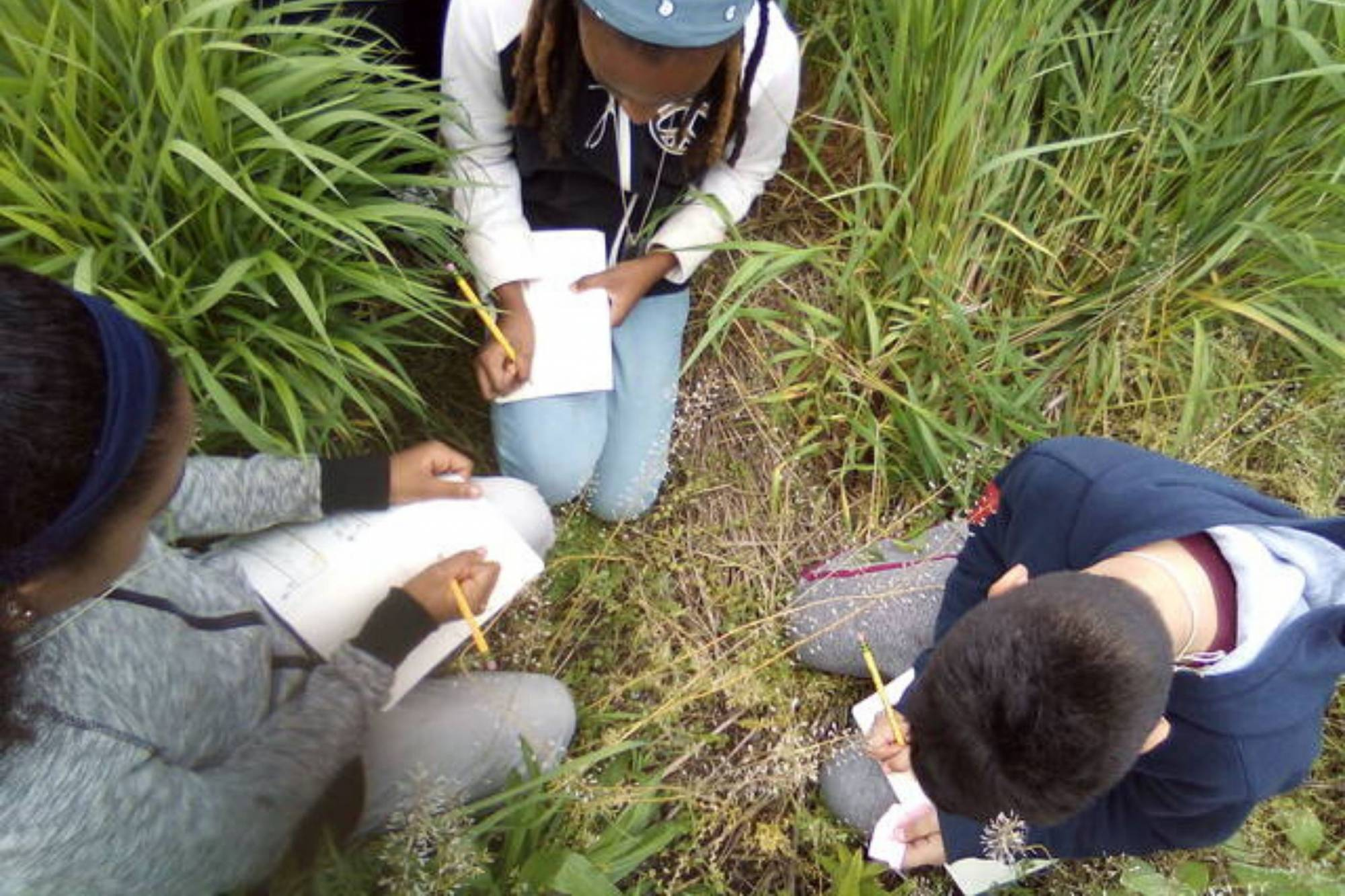 Naturalist Notebook Challenge and Competition